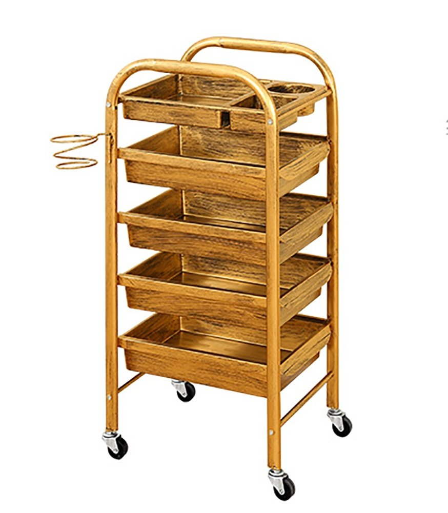 Salon Hairdresser Trolley Drawers Storage with wheels Hair Dryer Holder Barber Beauty Makeup Cart Coloring Spa Salon Tray, Golden, 2 wexe.com