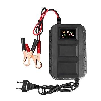 WOSOSYEYO 12V Cargador de batería Inteligente LED indicador ...