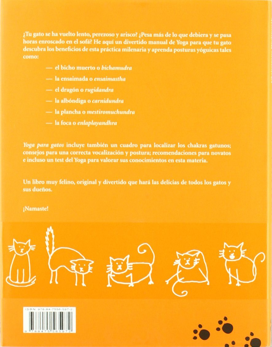 Yoga para gatos (Para Ver) (Spanish Edition): Christienne Wadsworth: 9788475565972: Amazon.com: Books
