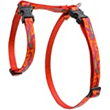 """LupinePet Originals 1/2"""" Go Go Gecko 9-14"""" H-style Harness for Small Pets"""