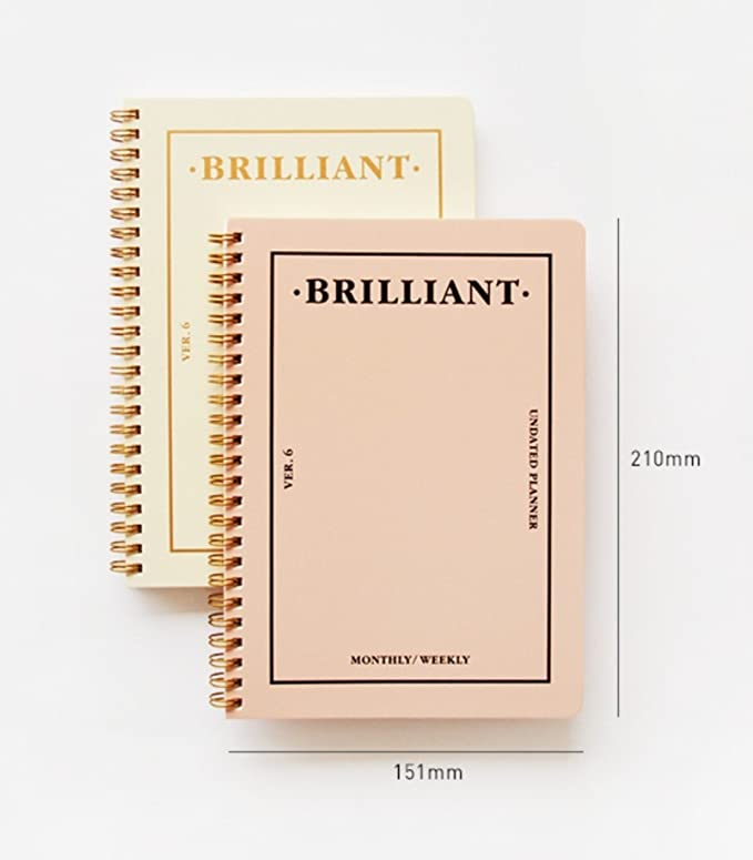 amazon com paperian brilliant monthly weekly planner wirebound