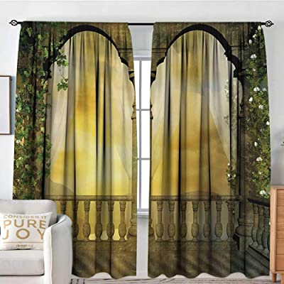 2 SWIRLS PRINTED SILVER GROMMET PANELS LINED BLACKOUT WINDOW CURTAIN TREATMENT