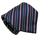Qobod business casual striped silk ties mens gifts travel case navy red white