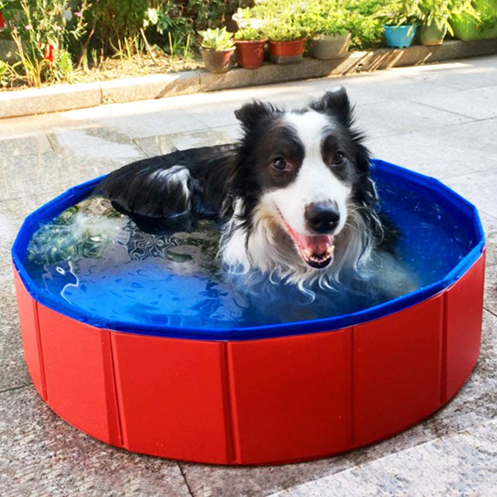SURPCOS Collapsible Pool for Dogs