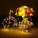 200 Led Fairy Lights 66Feet Starry String Lights