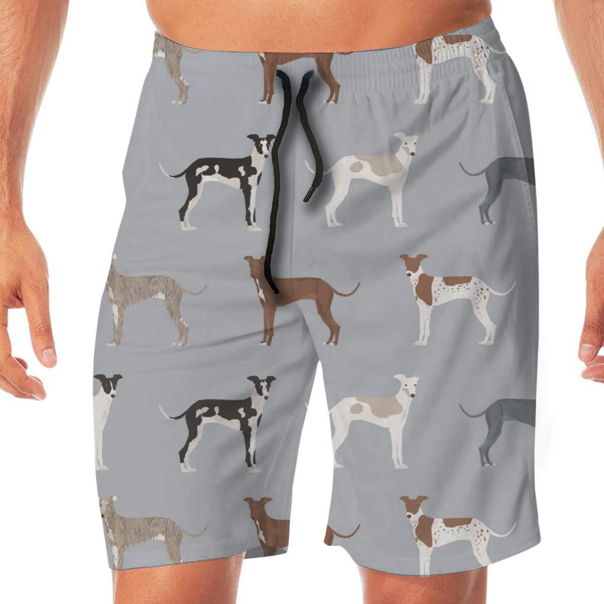 Tela de galgo italiano - Perros lindos Abrigo de colores y marcas Tela de perro Design_557 Hombres Troncos de natación Surf Beach Holiday Party Pantalones ...