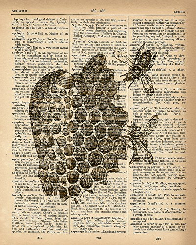 Dictionary Print - Bee Hive Honeycomb Upcycled Vintage Dictionary Page Poster - Size 8x10