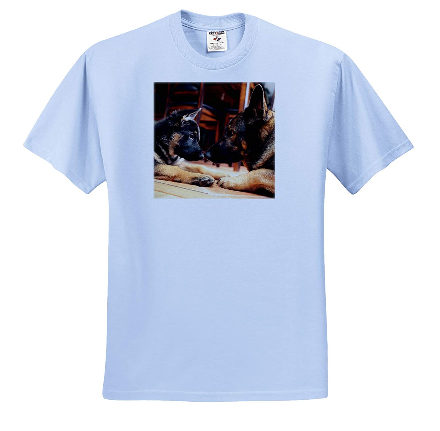 - T-Shirts Photo of Two German Shepherds Nose-to-Nose Figuring Each Other Out 3dRose Stamp City Animals