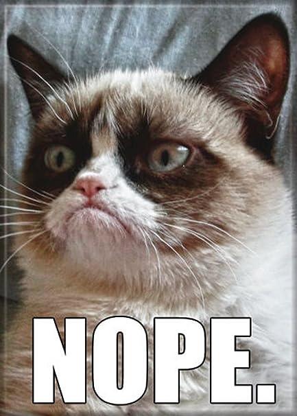 Amazoncom Ata Boy Grumpy Cat Nope 25 X 35 Magnet For