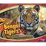 Bengal Tigers (Asian Animals)