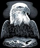 Reeves Bald Eagle Scraperfoil Artwork, Silver