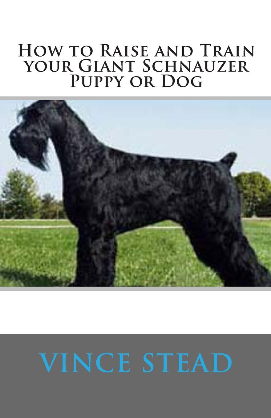 How-to-Raise-and-Train-your-Giant-Schnauzer-Puppy-or-Dog