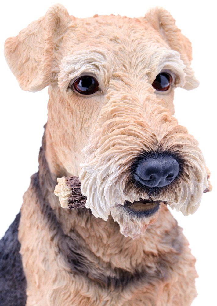 Hi-Line Gift Ltd Airedale Dog Statue by Hi-Line Gift Ltd. (Image #2)
