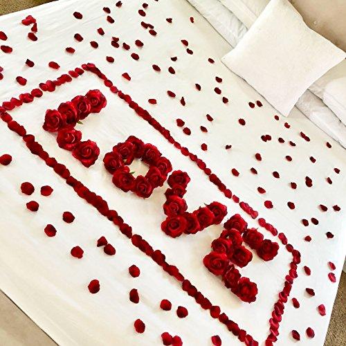 Review Red Roses & Petals