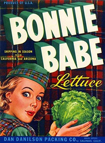 American Magnet MAGNET Salinas Scottish Scotland Bonnie Babe Brand Lettuce Crate Box Label Art Print