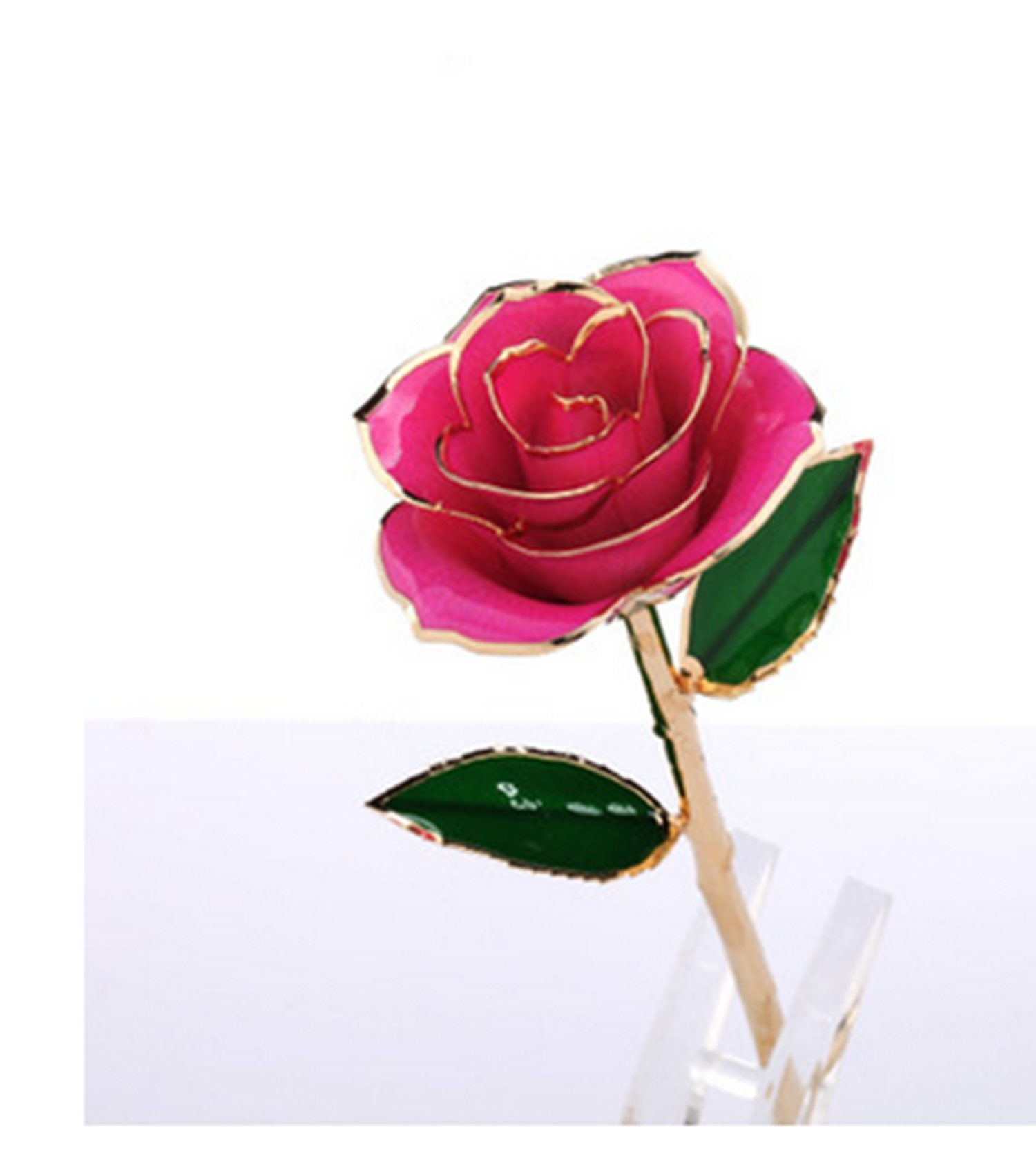 Wincspace Laquered Platinum Real Long Stem Dipped 24K Gold Trim Genuine Rose in Gold Retail Gift Box Best Gift Valentine's Day &Mother's Day Mother & Girl Friend (Pink)