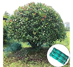 BIRD di compensazione Giardino Stagno Frutta Anti Netto Protezione verdure Gabbia Verde