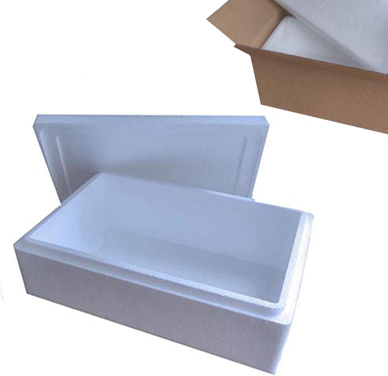 Starlight - Caja de poliestireno aislado para caja de pescado (7 L ...