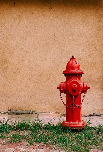 AOFOTO 5x7ft Streetscape Fire Hydrant Photography Studio Backdrops Rough Old Wall Weeds Grass Photo Shoot Background Outdoor Scene Video Props Boy Girl Adult Youngster Artistic Portrait from AOFOTO