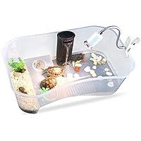 Zantec Tortuguera de plástico sin tapa, cómoda para tortugas o reptiles, 40 x 23 x 13 cm