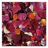 Rose Petals 240 cups. Romantic Rendezvous Preserved Freeze Dried Rose Petals. Wedding Decoration.