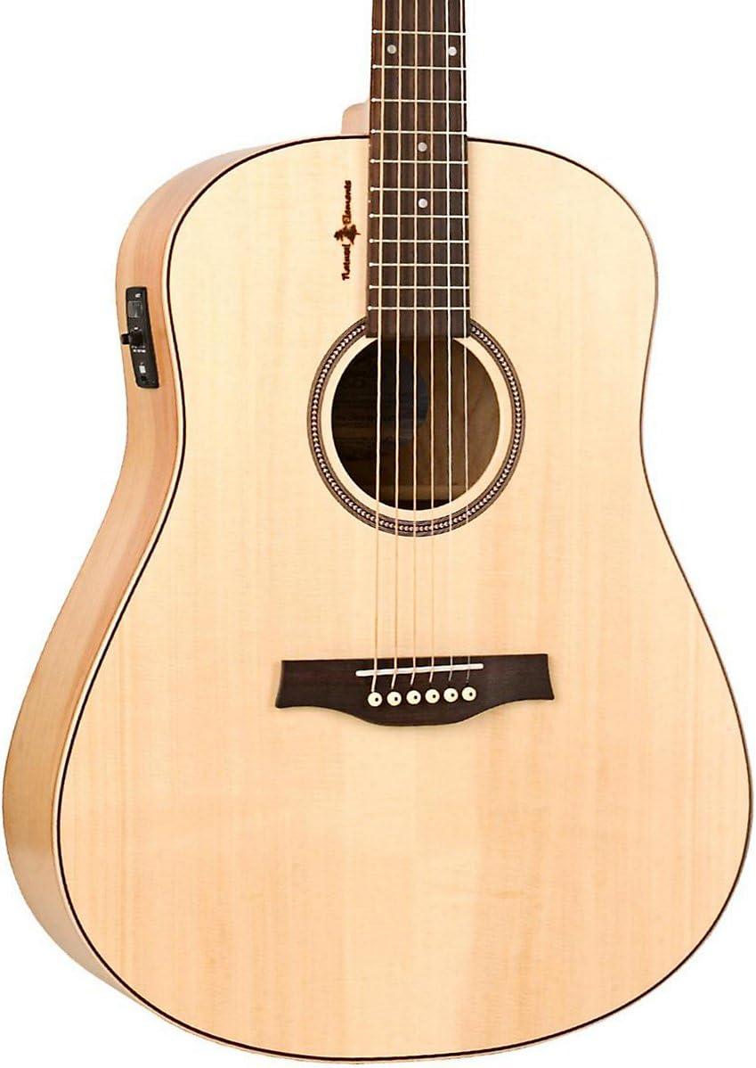 Gaviota Heart of Wild Cherry SG AC1 5T guitarra.: Amazon.es ...