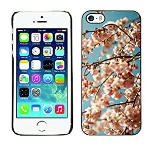 LASTONE PHONE CASE / Carcasa Funda Prima Delgada SLIM Casa Carcasa Funda Case Bandera Cover Armor Shell para Apple Iphone 5 / 5S / Cool Blue White Blooming Bloom Apple Tree