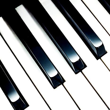 EXCEART 1 juego/7 piezas de teclas de piano de repuesto para ...