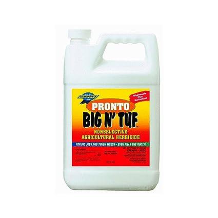 PBI Gordon 9561077 1 Gallon Big Tuf Weed Killer