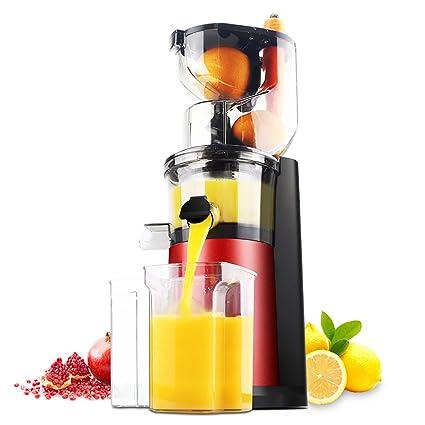 DULPLAY Silencioso Disminuya la velocidad de Masticar exprimidor,Sano fruta y verdura 180 vatios,
