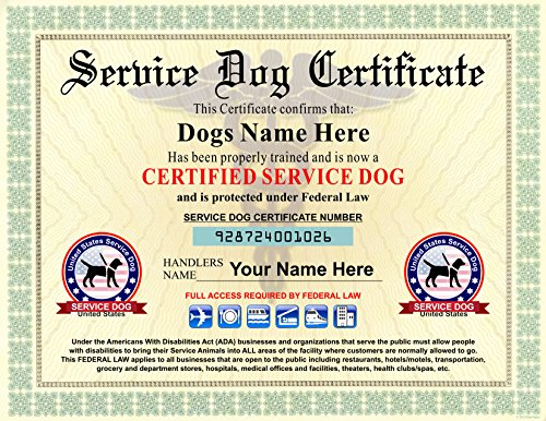 - Service Dog Certificate - We customize it with Dogs and Handlers Name - 8.5 by 11 inches