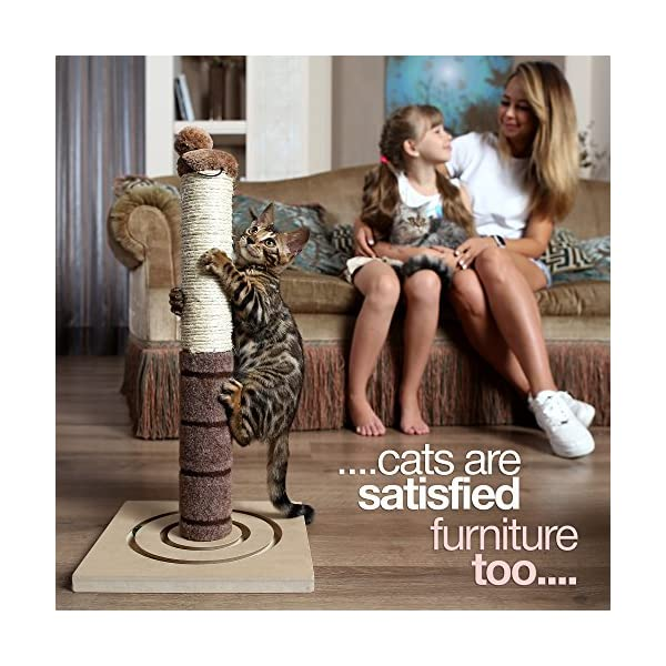 4 Paws Stuff Tall Cat Scratching Post Cat Interactive Toys - Cat Scratch Post Cats Kittens - Plush Sisal Scratch Pole Cat Scratcher - 22 inches (Beige) 4