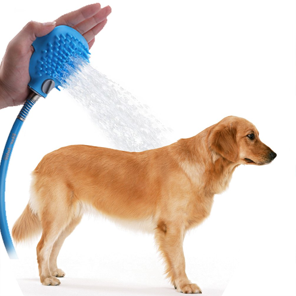 photos for photo stock stall wash water shower waiting worried alamy a warm dog in dry image images