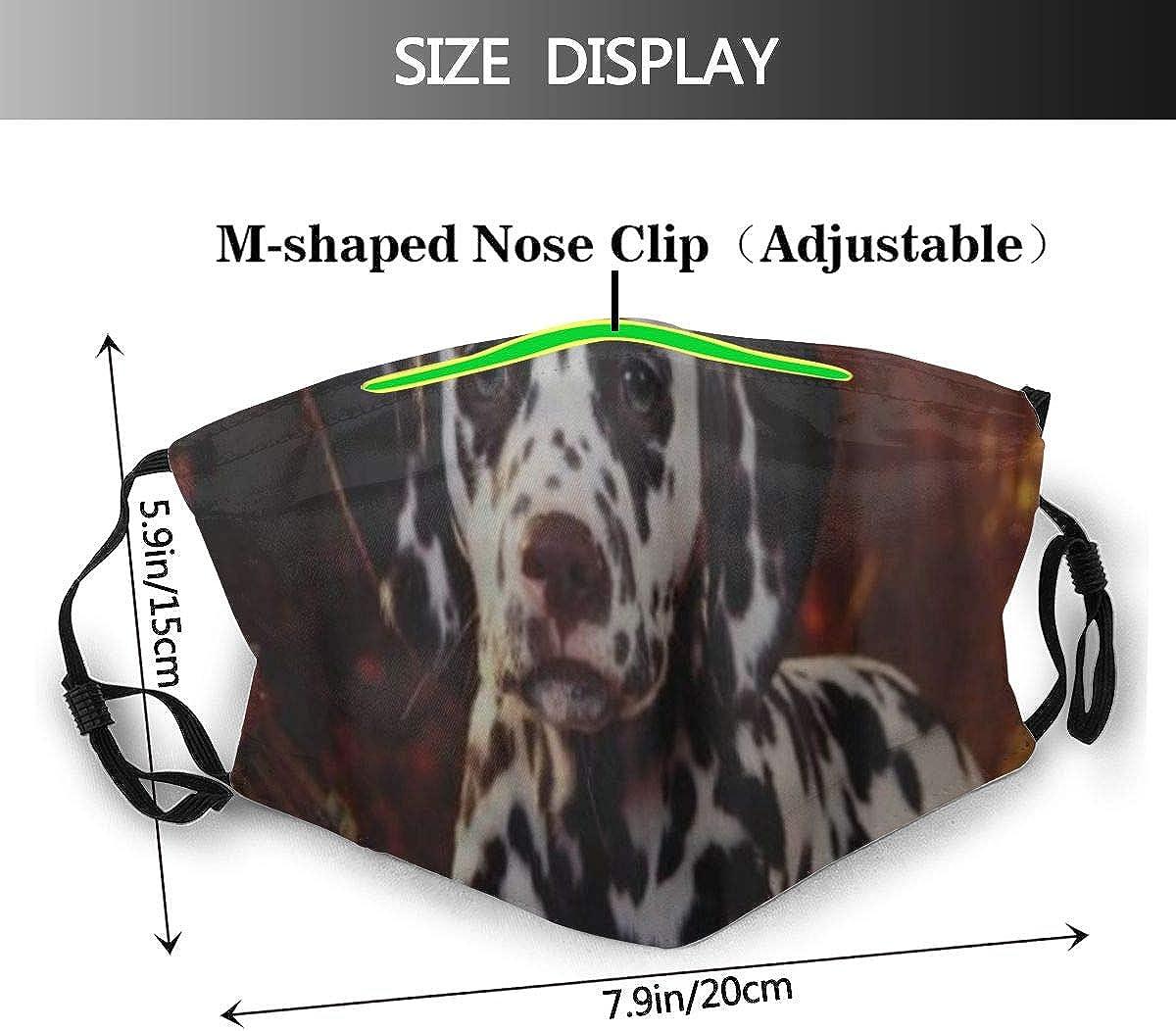 DYCBNESS Face Cover Dalmatiner Dog Sit Breed Pumpkins verl/ässt Halloween Wiederverwendbare Anti-Staub-Mund-Bandanas mit 6 Filtern