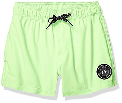 5e3b75b40f Quiksilver Big Boys' Everyday Volley Youth 13 Boardshort, Green Gecko, ...