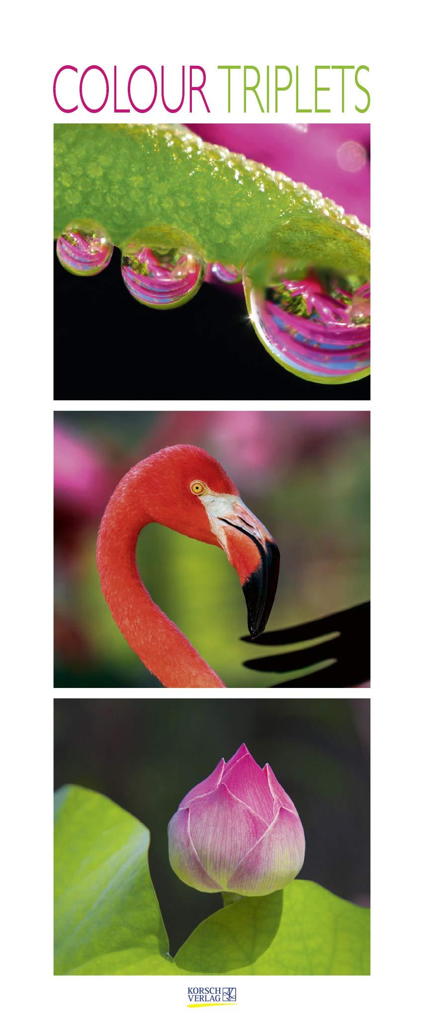 Colour Triplets 2020  Schmaler Wandkalender. Foto Kunstkalender Mit Farblich Abgestimmten Bildern. PhotoArt Vertikal. 285 X 69 Cm. Edles Foliendeckblatt.