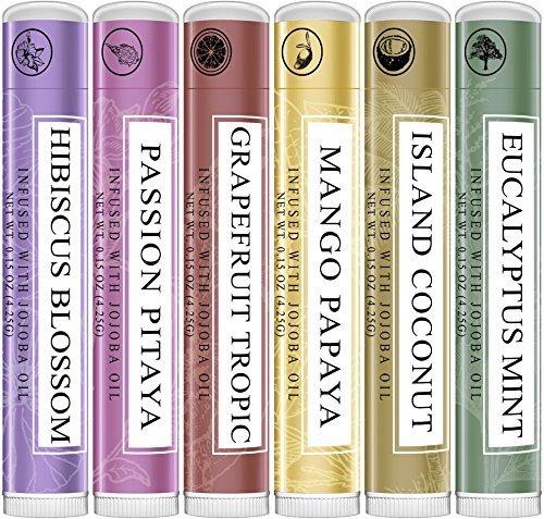 Art Naturals Lippen Balsam Pflegestifte - 6er Pack je 4 ml, 100% Bienenwachs | Ausgewählte Aroma Sorten | Beste Lippenpflege für trockene, spröde, rissige Lippen | Wundheilung & Regeneration mit Aloe Vera, Kokosnuss, Castor & Jojoba Öl für samtiges Hautgefühl & schöne, zarte Lippen
