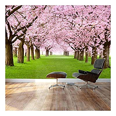 Wall26 - Beautiful Cherry Blossom Trees - Landscape - Wall Mural, Removable Sticker, Home Decor - 100x144 inches