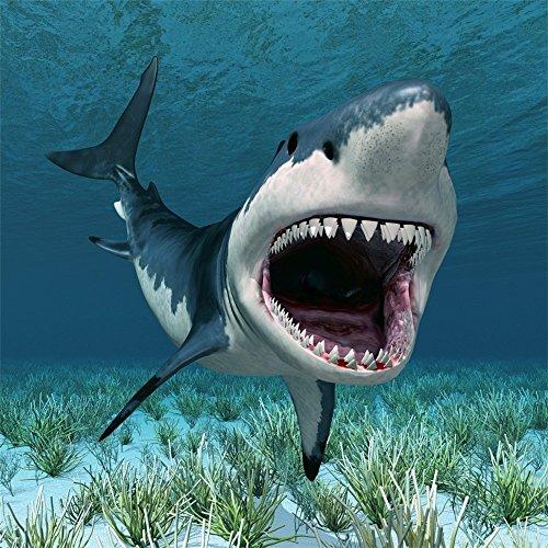 Leowefowa 5X5FT Vinyl Underwater World Backdrop Aquarium 3D Great White Shark Green Grass Ocean & Sea Cartoon Photography Background Boys Kids Happy Birthday Party Photo Studio Props -