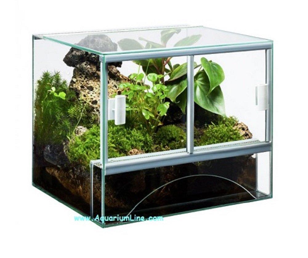 Terrarium Pro - Terrario in Vetro cm40x30x30h altro