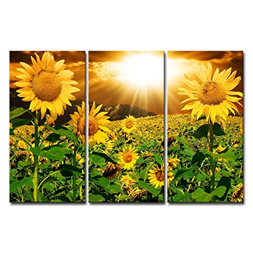 Canvas Print Wall Art Painting For Home Decor Bright Sunflower Yellow Sunshine 3 Pieces Panel Paintings Modern Artwork The Picture For Living Room Decoration Flower Pictures Photo Prints On Canvas ()