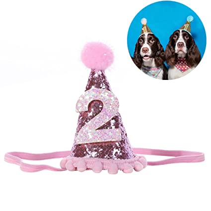 Amazon Legendog Dog Birthday Headwear Shiny Hat Pet Headband Hair Accessories For Cat Supplies