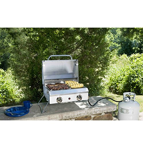 Member's Mark Portable Stainless Steel Gas Grill with Cover (Grills Mark Members)