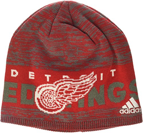 Authentic Detroit Red Wings - 1
