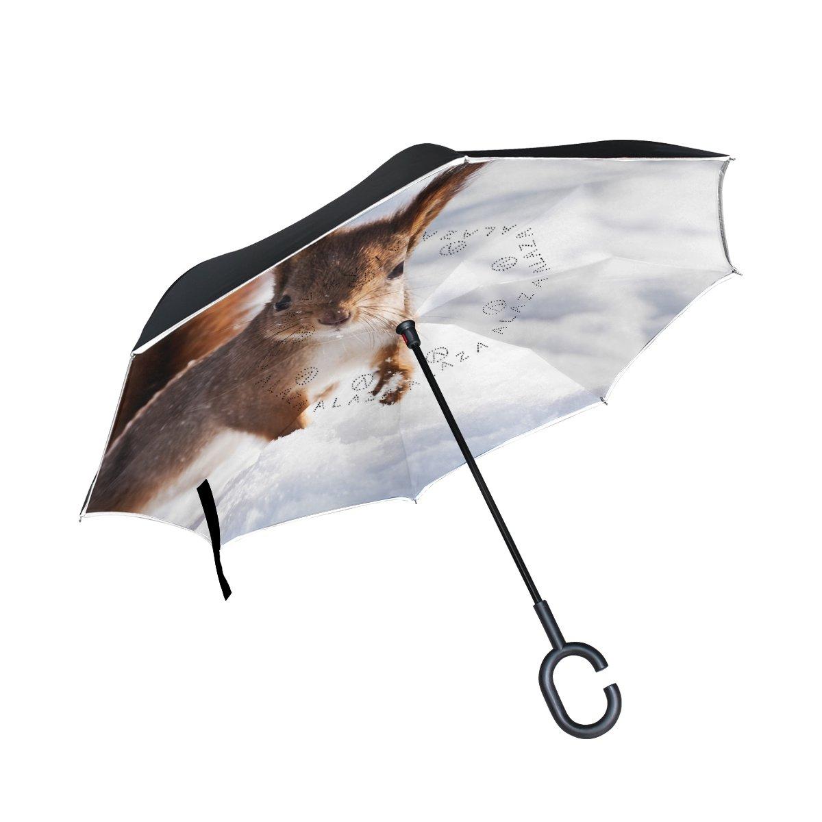 TIZORAX écureuil dans une Jump Snow inversé double couche droites parapluies sur l'envers réversible Parapluie avec poignée en forme de C pour la pluie Soleil de voiture Utilisation