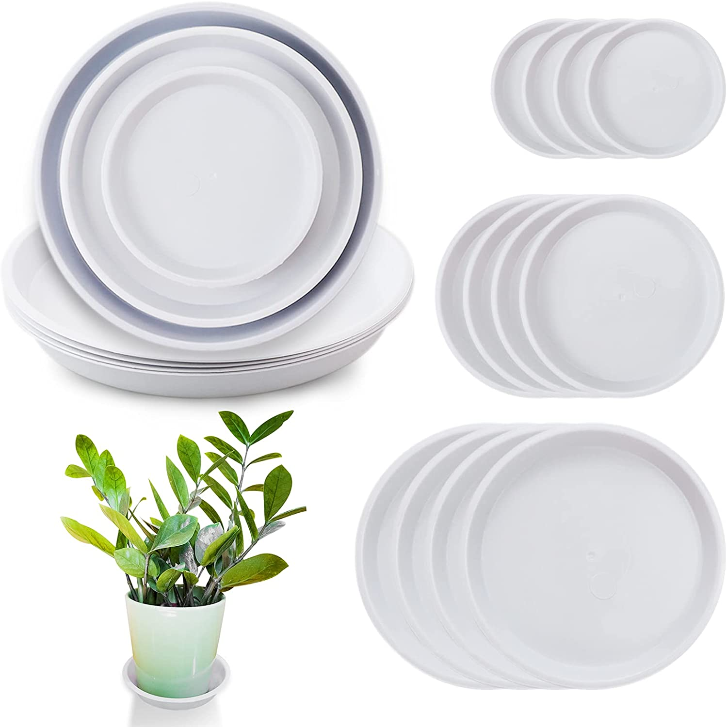 Sc0nni 12 Pack Plastic White Round Wave Plant Saucer,Durable Heavy Duty Flower Plant Pot Drip Tray Container for Home Garden Indoor and Out Door Plant (6 Inch/8.5 Inch/10 Inch)