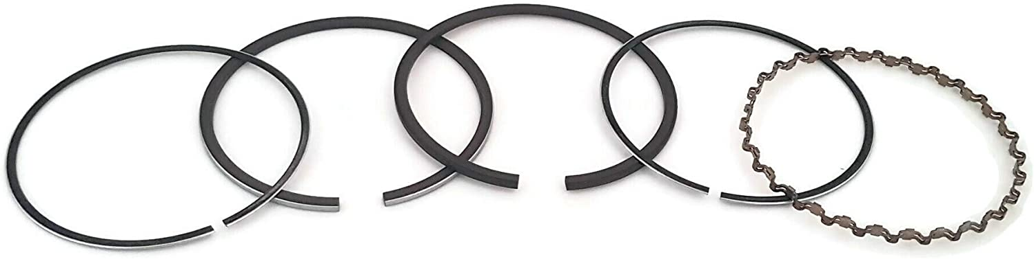 Details about  /New 010 Piston Kit With Ring Set Fits Honda G300