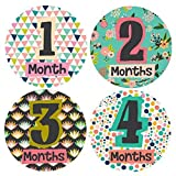Little Lady Monthly Stickers - Baby Girl - Months 1-12 by Lucy Darling