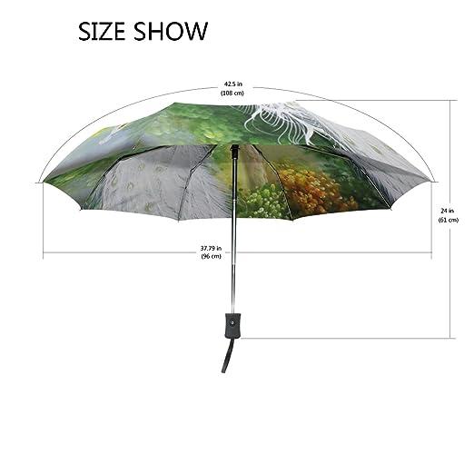 bennigiry abstracción pájaro Vector pavo real 3 Folds Auto Abrir Cerrar paraguas compacto, resistente al viento portátil durabilidad viaje lluvia paraguas ...
