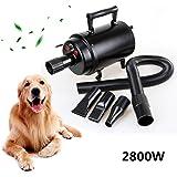 Iglobalbuy Professionele 2800W hondenföhn dierenföhn haardroger voor huisdieren hondenverzorging (zwart)